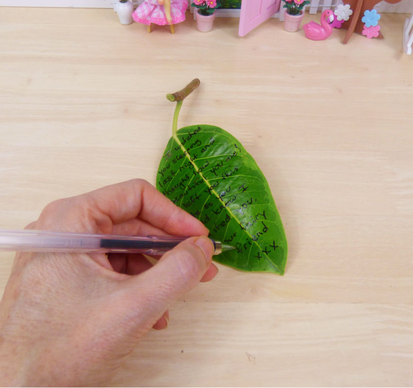 Fairy leaf Letters